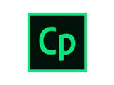 Captivate разработка электронных курсов